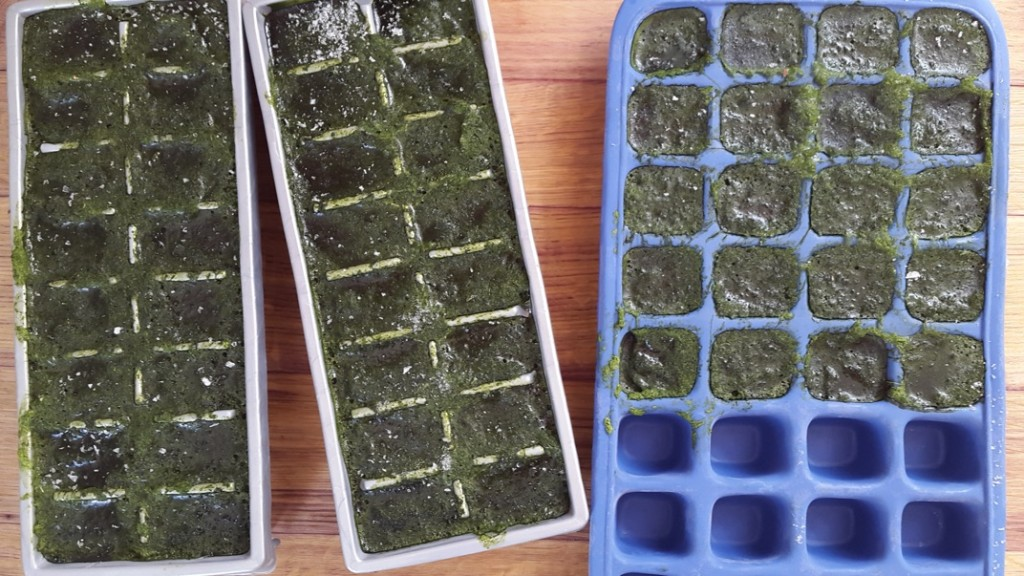 Spinach blended into ice blocks